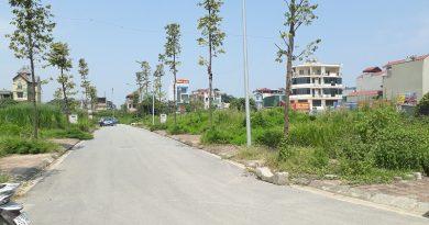 khu-dau-gia-phu-luong